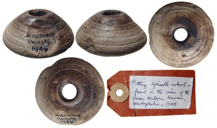 spindle-whorl-ar2171
